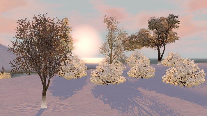 S3_Urduna_Winter1.jpg