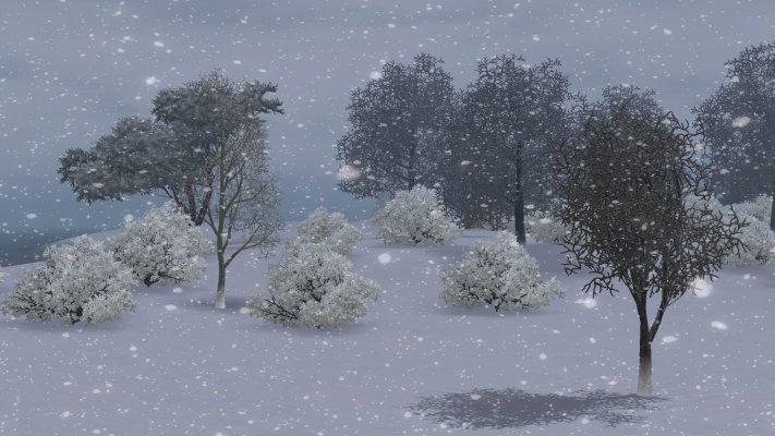 S3_Urduna_Winter2.jpg
