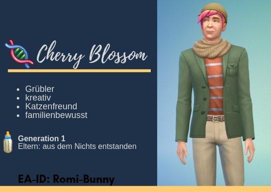 Cherry Blossom -Info.jpg