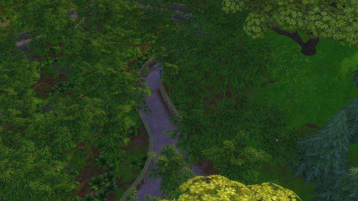 bambuswald.jpg