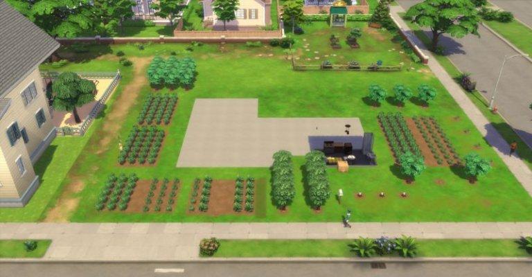 Mein Garten (Challenge geschafft).jpg