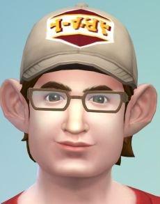 Maxis Sims.JPG