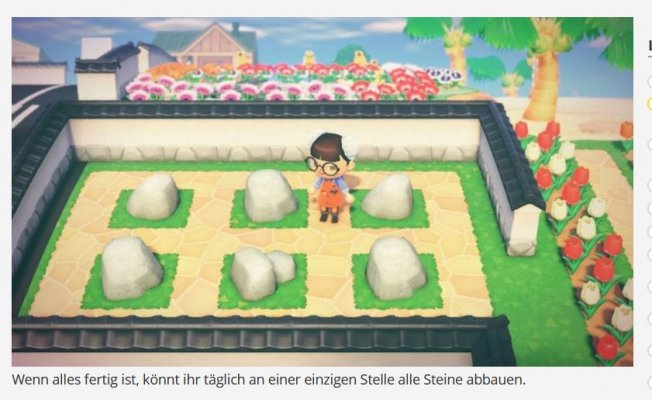 Steingarten anlegen.JPG