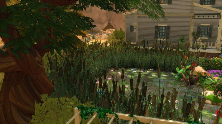 14 Teich und alter Baum.jpg