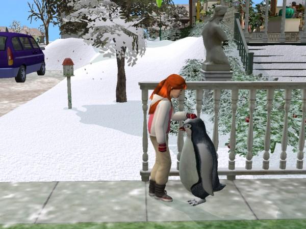31-winter.jpg